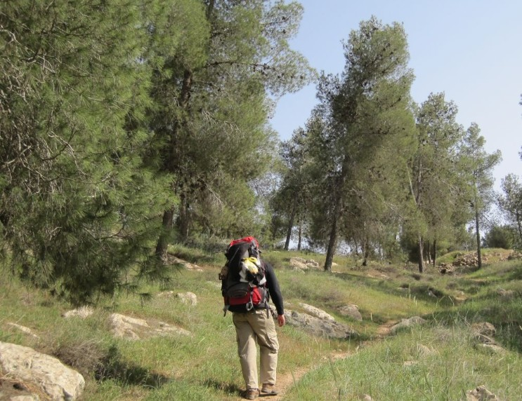 Don on trail in east Lahav Forest