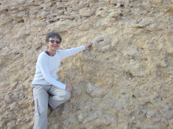 Diana in front of wall of fossil ammonites