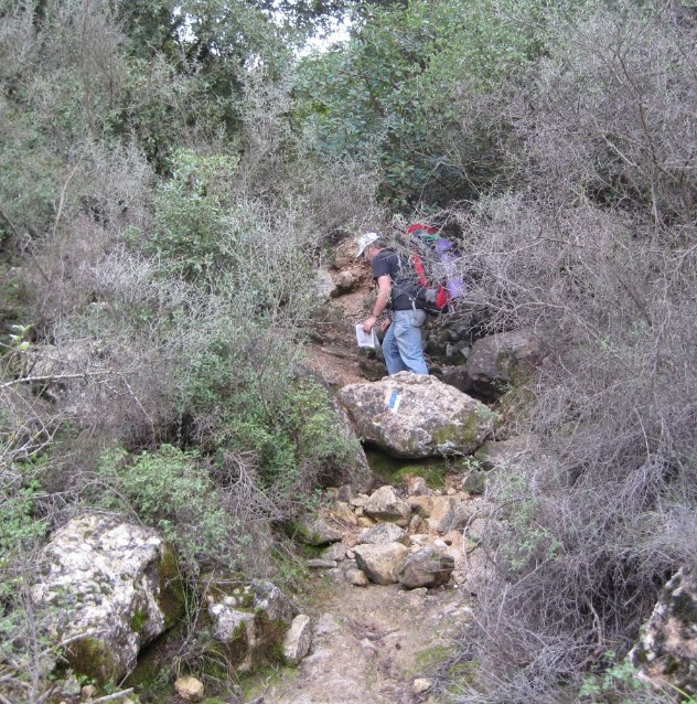 Up the steep path to EIn Kobi from Nachal Rafaim