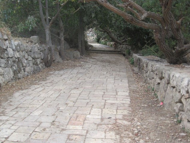 paved road leading out of Lifta to Spring
