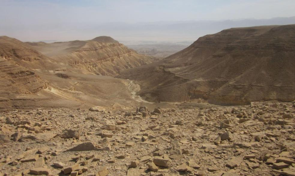 Wilderness with the Arava rift valley in the distance.