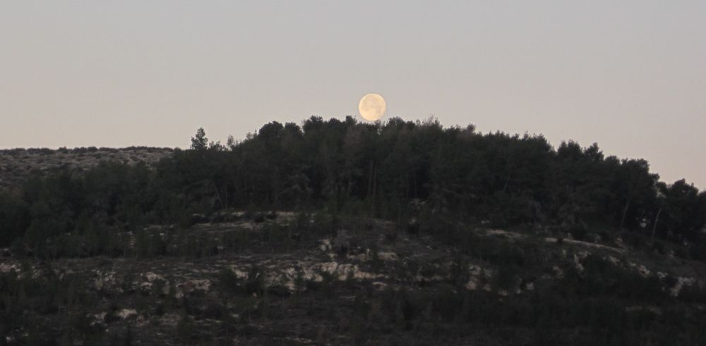 Full moon setting over Tel Azeka