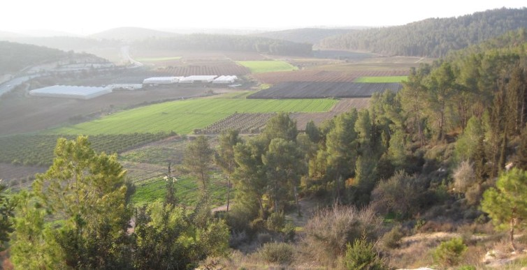 View of Elah valley from half way up Tel Azeka