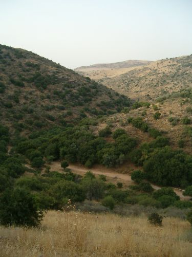 Beginning of Wadi Dishon
