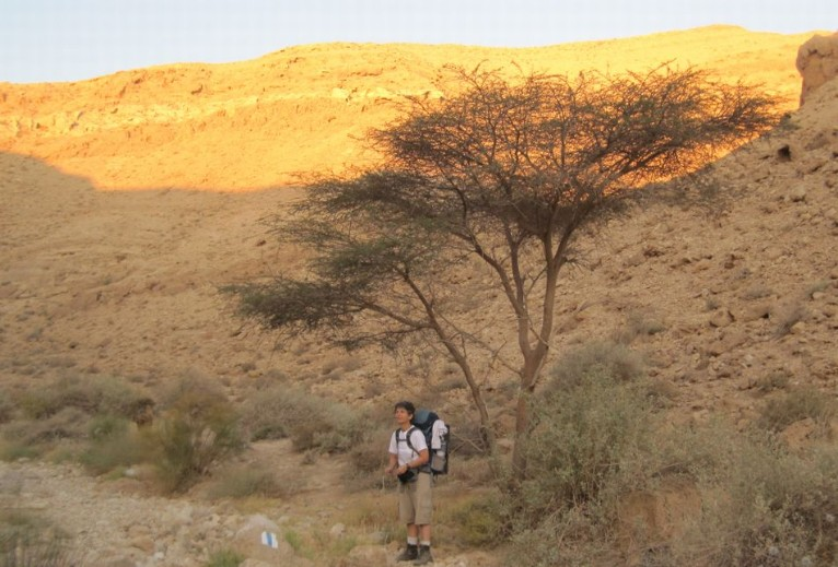 Diana standing by a tree _ climbing out of Nachal zafit נחל צפית