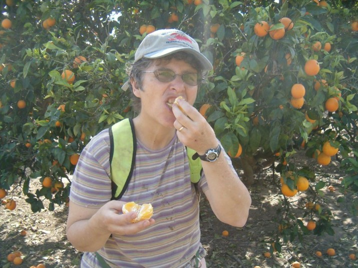 Diana eating orange from orchard of ripe oranges.