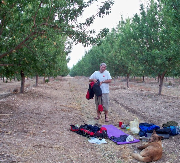 Packing up camp in the almond orchard.